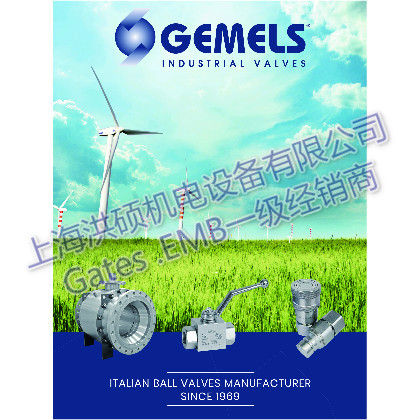 Gemels球阀-上海洪硕机电设备有限公司
